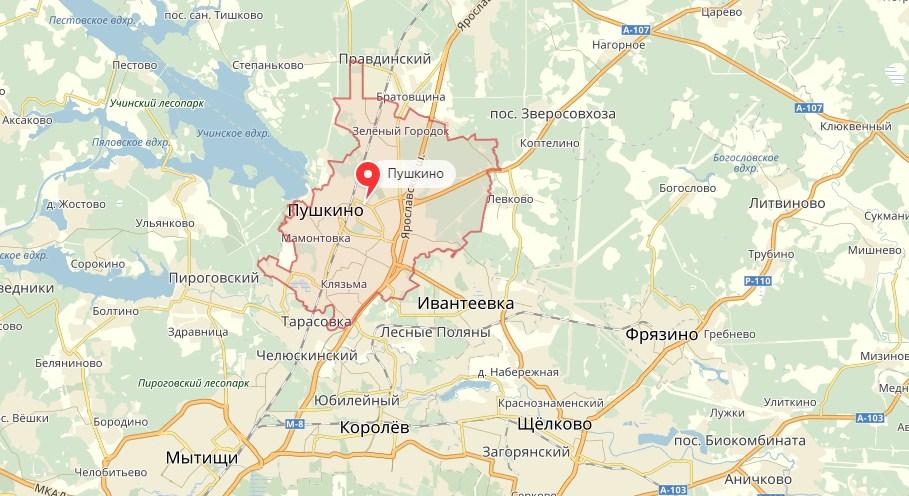Ремонт холодильников в Пушкино